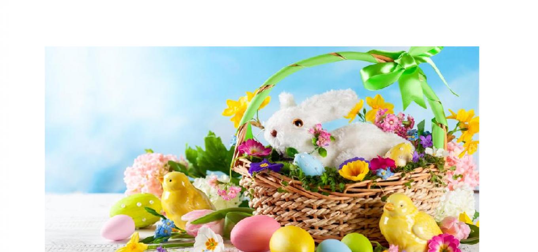 Zdrowych, pogodnych Świąt Wielkanocnych, pełnych wiary, nadziei imiłości…